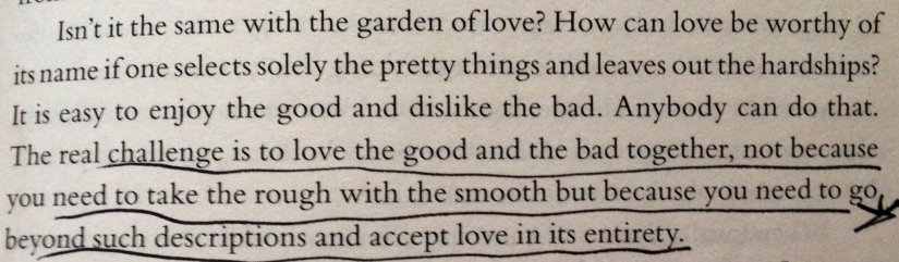 from The Forty Rules of Love by Elif Shafak